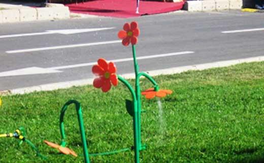 полив растений цветок