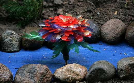 цветок для водоема