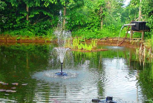 Водоем и фонтан