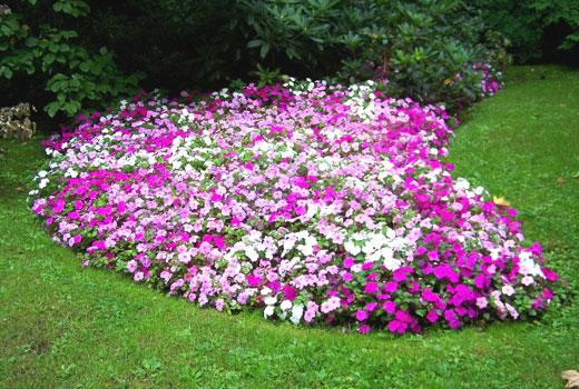 Цветочный ручей