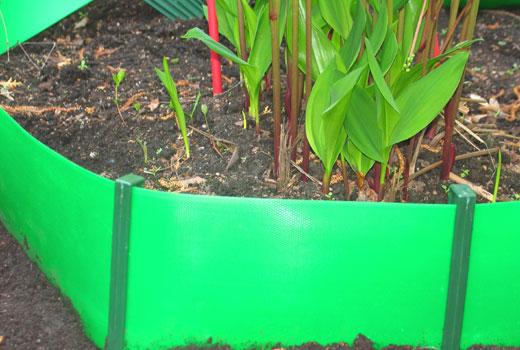 Зеленая бордюрная лента - клумба