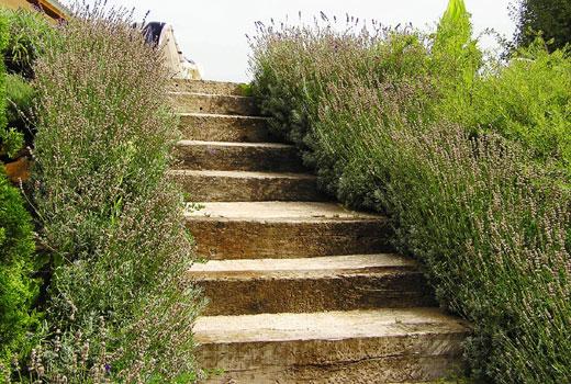 Лестница на склоне с деревянными ступенями