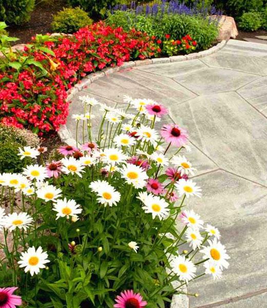 Цветник вокруг площадки из камня