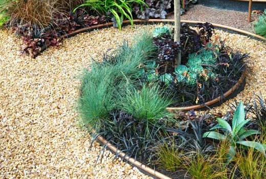 Декоративные травы в цветнике