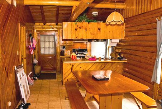 Кухня стильная в деревянном доме