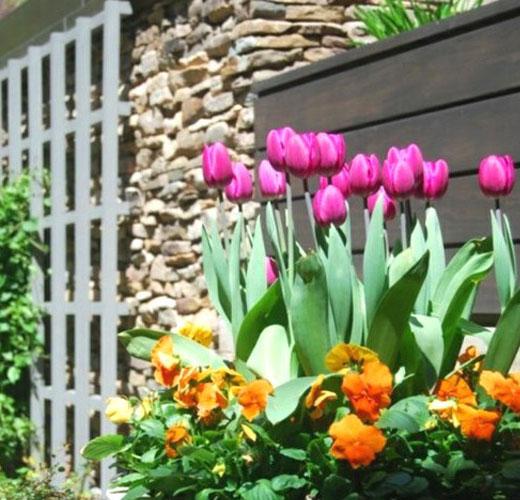 Цветочная композиция с тюльпанами