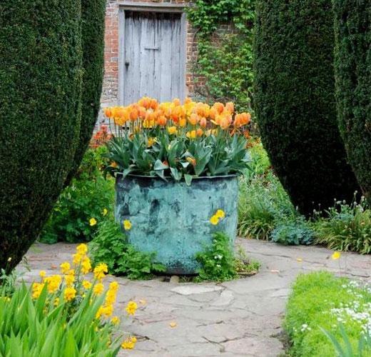Контейнер с тюльпанами в ландшафте