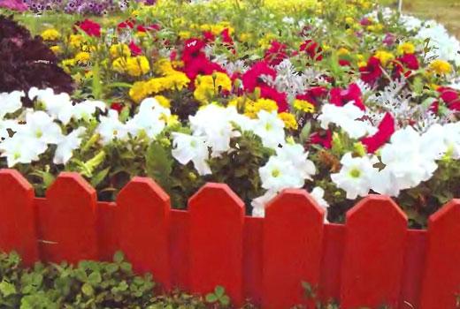 Штакетник для цветника