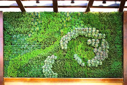 Зеленая стена из разных мхов