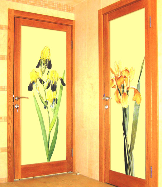 растительный декор на стеклянных дверях