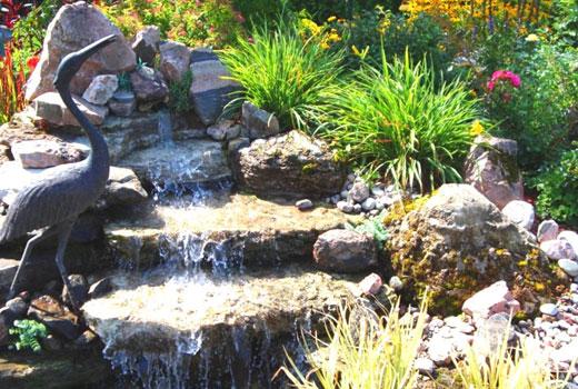 Растения вокруг водопада