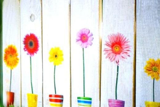 Цветы и забор