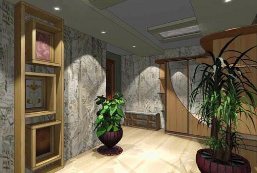 Растения для коридора и холла