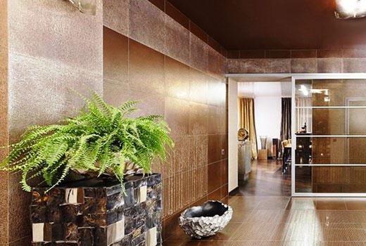 Комнатные растения озеленение коридора