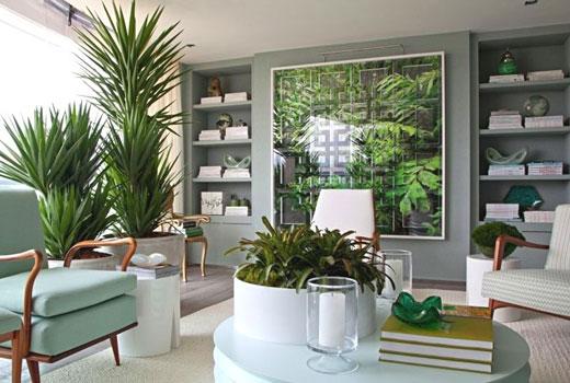 Разделяем комнату растениями