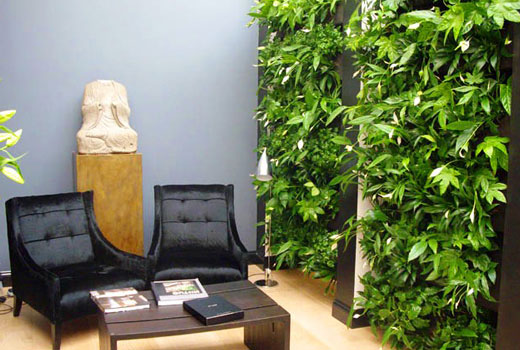 Зеленая стена в доме