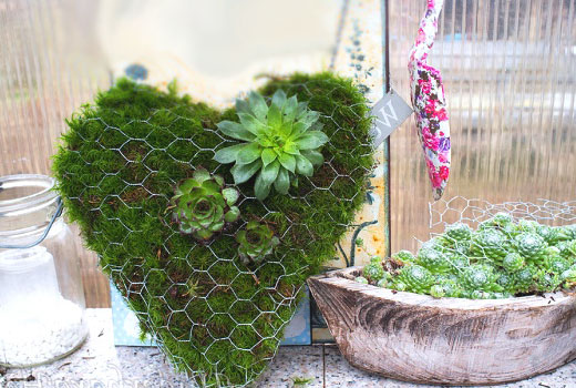 Зеленое сердце из веток