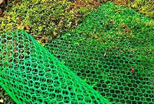 Пластиковая сетка рулон