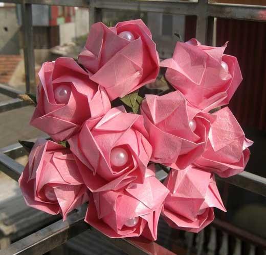 розы кавасаки