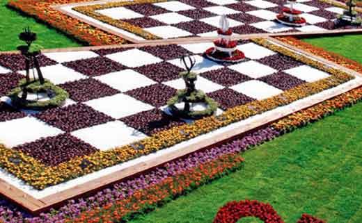 цветник шахматы