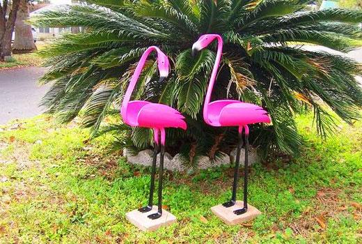 2 фламинго
