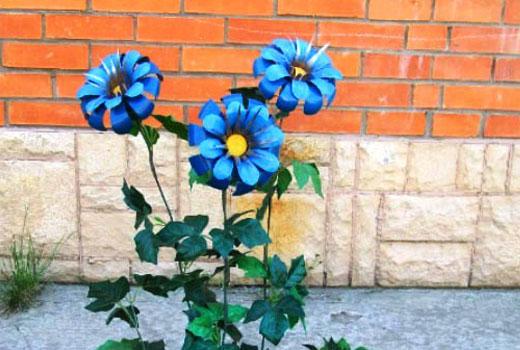 двойные лепестки цветков