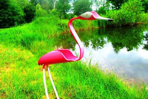 фламинго у водоема