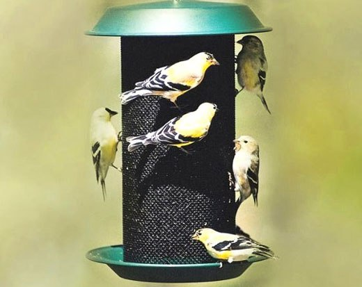 кормушка для птиц из сетки