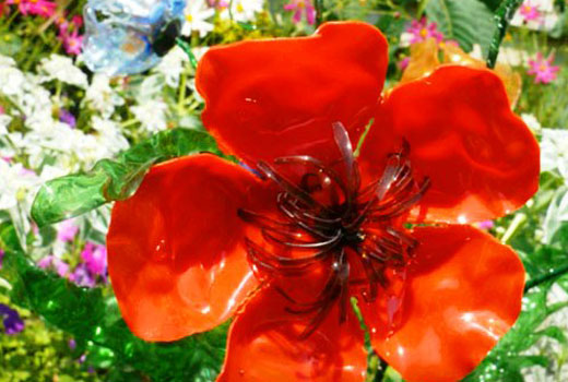 цветок мак из бутылки