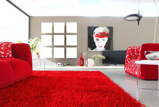 красный коврик с длинным ворсом