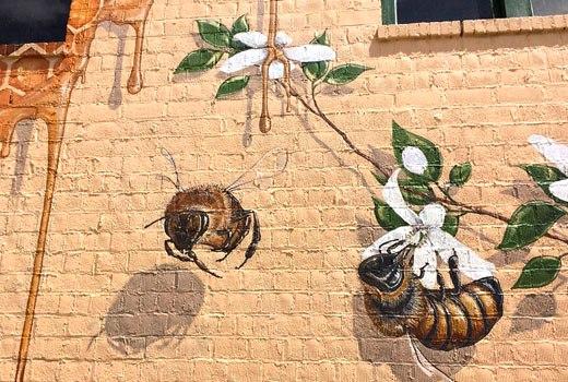 пчелы на стене