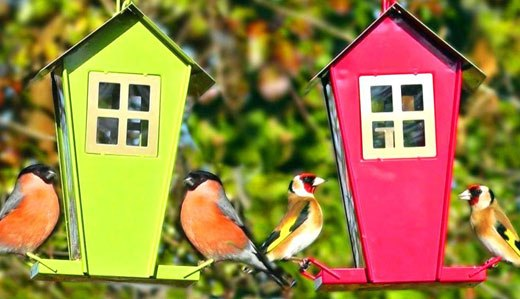 Птичьи кормушки для сада