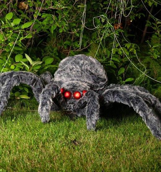 глаза паука декор