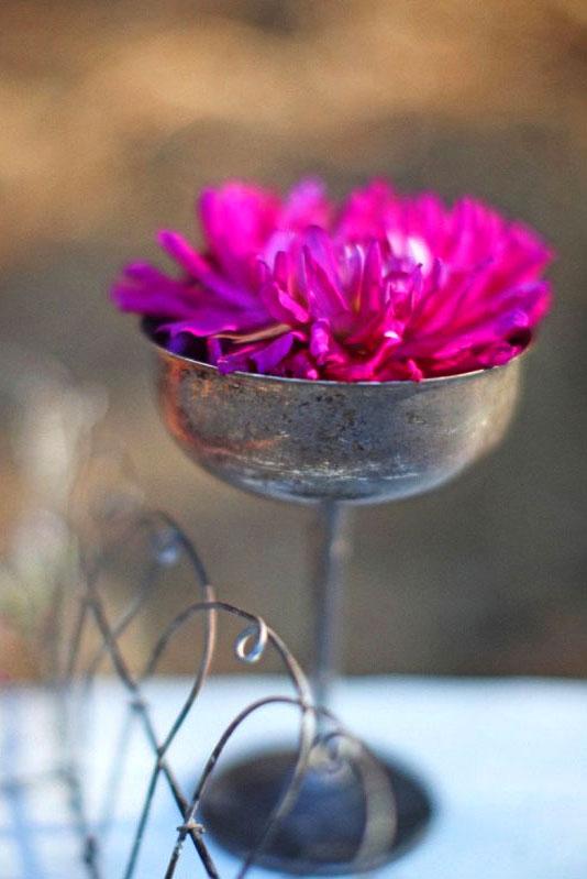 цветы в креманке