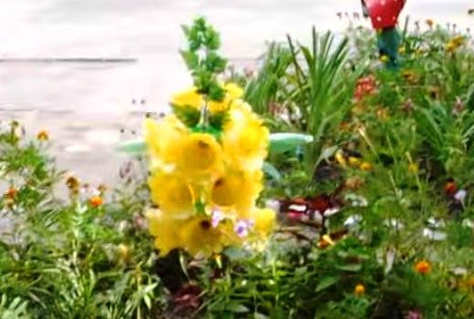 наперстянка цветок из бутылок